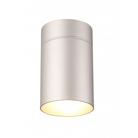 5628 CEILING SILVER 1xE27 40W (No Inc)