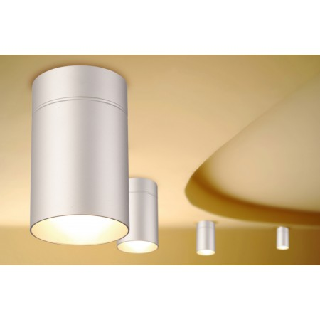 5629 CEILING 1L SILVER 1xE27 40W (No Inc)