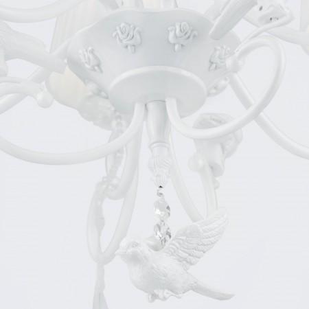 ARM001-06-W