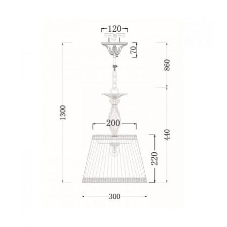 ARM247-PL-01-G